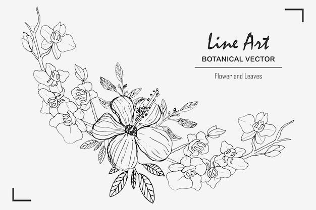 Штриховые рисунки ботанических листьев и цветов