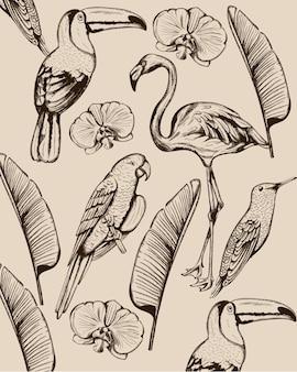 熱帯の動物や葉のラインアート構成。フラミンゴ、トゥカノ鳥、オウム、ツバメ