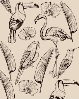 Line art composition of tropical animals and leaves. flamingo, tucano bird, parrot and swallow
