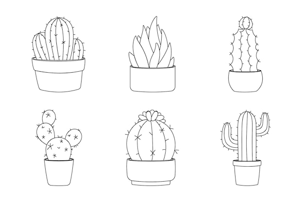 Line art design element cactus collection. set six elements