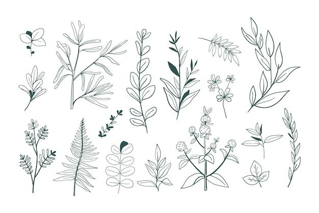 線画手描き花コレクション