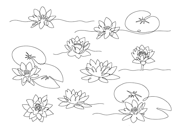 Line art water lily. set of minimal flowers with leaves