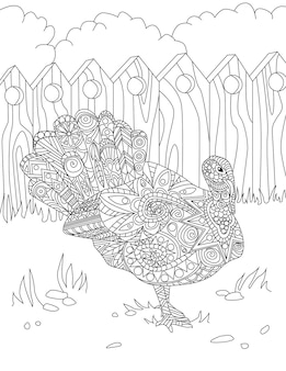 Line drawing of a big beautiful peacock bird with opened tail standing alone looking away inside fence. large pretty chicken specie drawing has fabulous spanned tail.