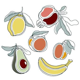 線画果物。現代の連続ラインアート、美的な輪郭。図
