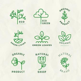 Линия эко логотип шаблон вектор для брендинга с набором текста