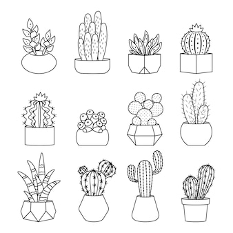 Line style cactus and succulents set