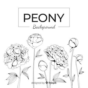 Линейный цветочный фон с концепцией пиона
