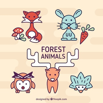 Lineal forest animals pack