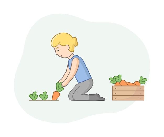 Линейный мультяшный фермер собирает спелую морковь с земли и кладет ее в деревянный ящик. женский персонаж с планом и летом урожай овощей. векторный состав концепции сезонного сбора.