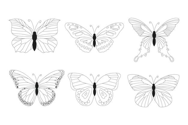 선형 평면 나비 개요 컬렉션