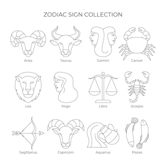 Linear flat zodiac sign collection illustration