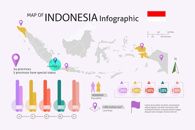 Linear indonesia map infographic