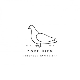 Linear logo  dove bird on white background. pigeon colorful emblems or badges.
