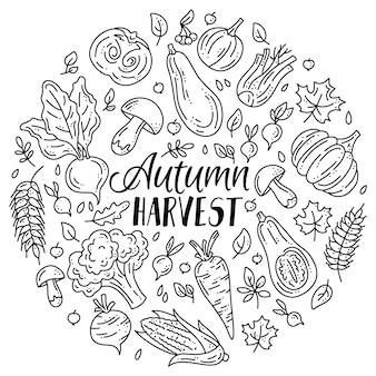 낙서 스타일의 가을 수확을 위한 야채와 버섯의 선형 세트