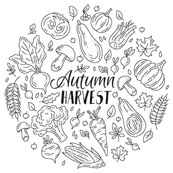 Linear set of vegetables and mushrooms for the autumn harvest in doodle style
