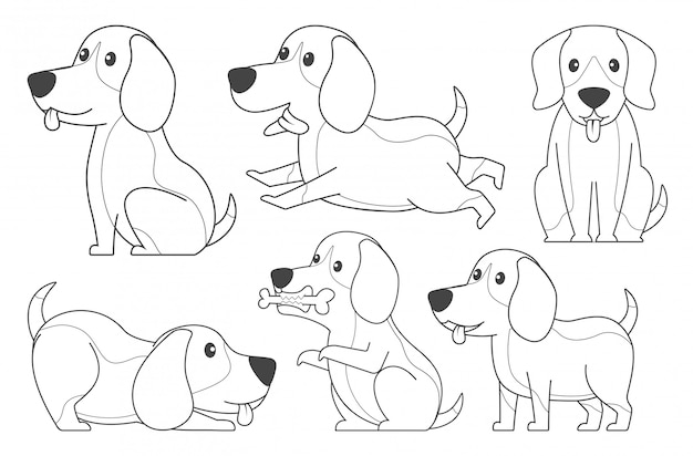 Lineart beagle for coloring book