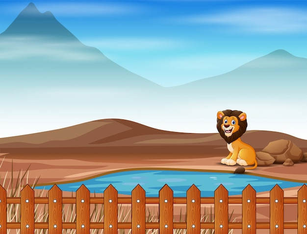 Lion animal cartoon living on the dry land