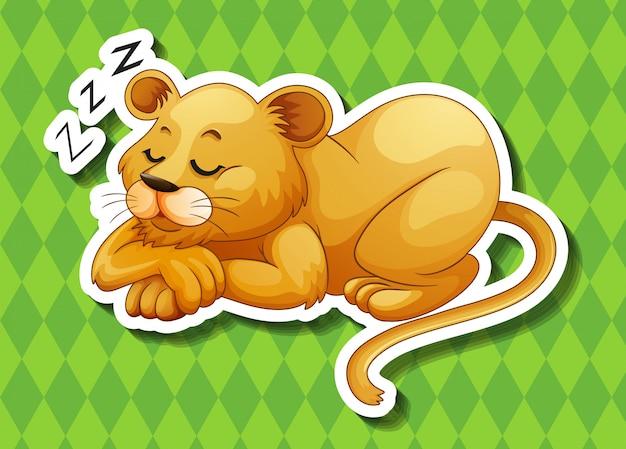 Левский спящий один