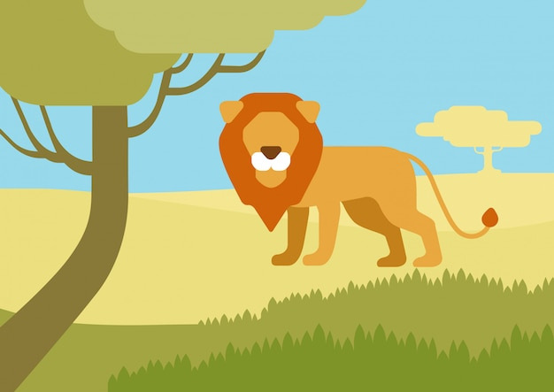 Lion in habitat flat cartoon, wild animals.