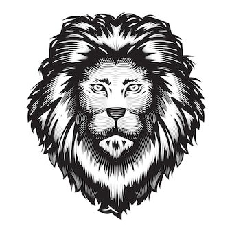 Lion head design on white background. lion head line art logos . vector illustration.