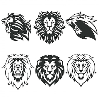 Lion logo package