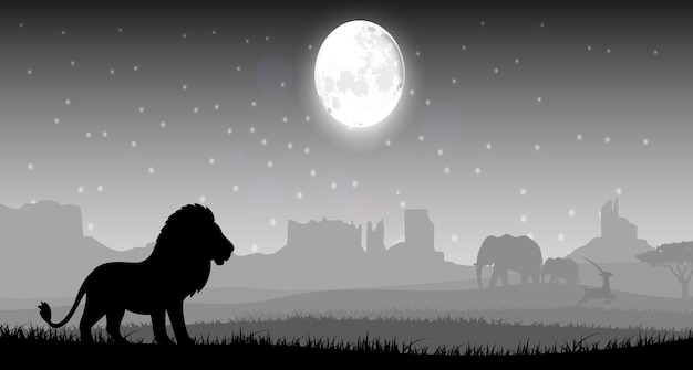 Lion in the night