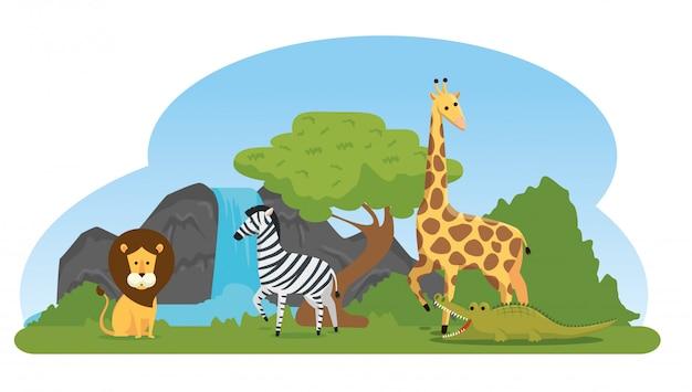 自然保護区のシマウマとキリンとライオン