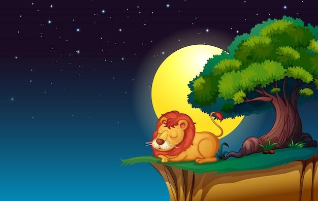 ライオン Premiumベクター