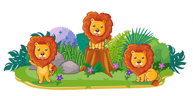 Lions are playing together in the garden