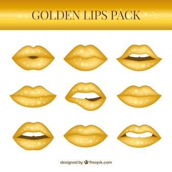 황금색 입술 컬렉션