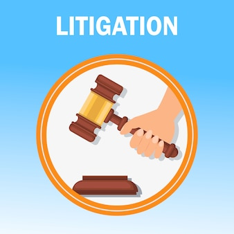 Litigation court procedure