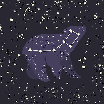 Little bear ursa minor. constellation.