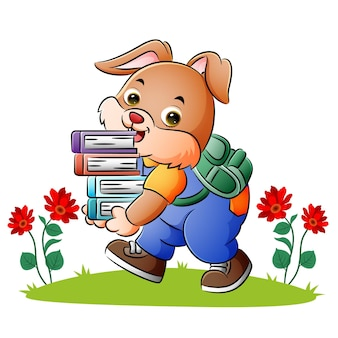 The little bunny is bringing a lot of books of illustration