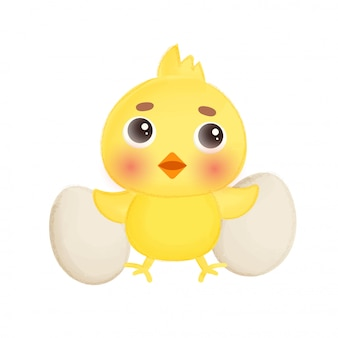 Little chicken and eggs.