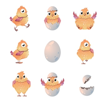 Little chicks set.