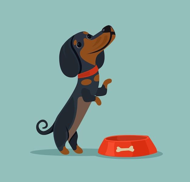 小さなかわいい犬のキャラクターのマスコットは、飼い主に食べ物を食べて要求したい
