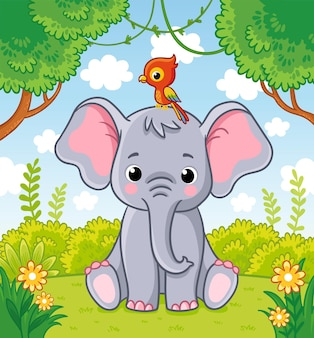 Little cute elephant sits in a clearing in the jungle with a parrot on his head