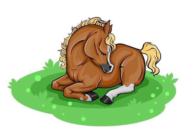小さなかわいい子馬