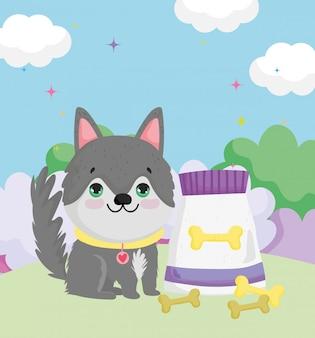 首輪の食べ物と骨のペットと座っている小さな犬