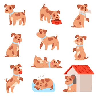 Little doggie puppy set