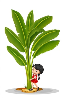 小さな女の子とバナナの木