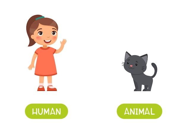 Маленькая девочка и милый черный котенок. карточка слова антонимов человека и животных, концепция противоположностей.