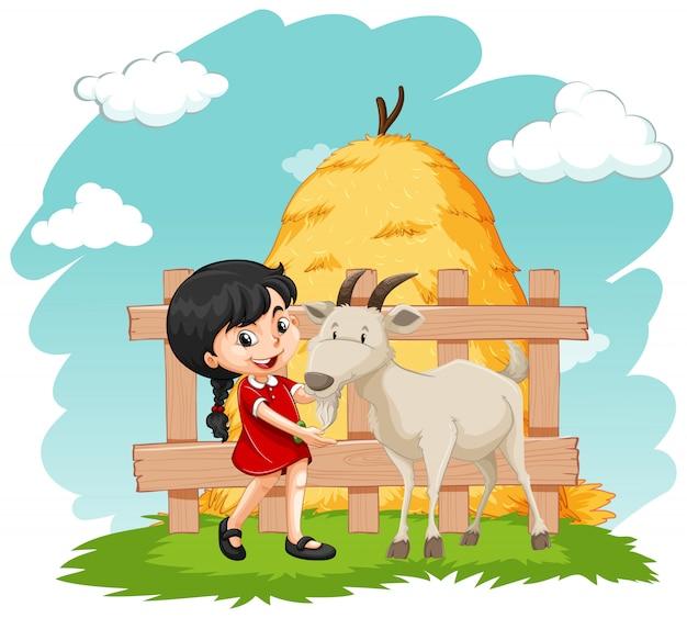 小さな女の子と農場でヤギ