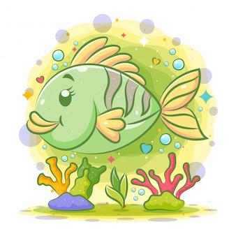 Маленькая зеленая рыба-клоун плавает под красивым морем