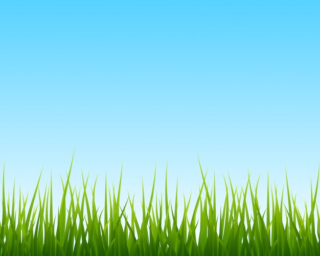 Little green grass, blue sky seamless background
