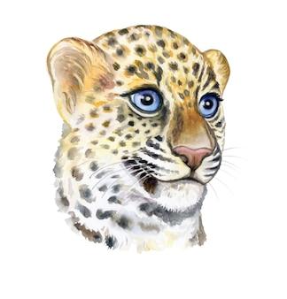 青い目の小さなヒョウの子のポートライト銃口子供の赤ちゃんの肖像画