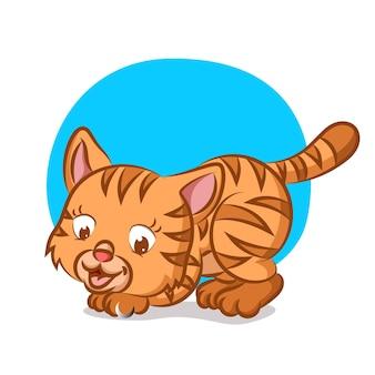 Маленькая оранжевая кошка ловит что-то рукой