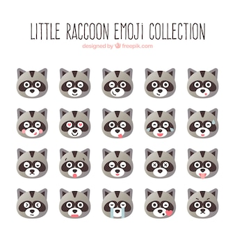 Little raccoon emoji collection