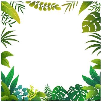 Маленький кустарник для сада и джунглей, изолированные на белом фоне