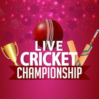 Live cricket championship tournament match with cricket equipment
